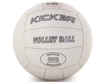 Волейбольный мяч Larsen «Kicker Tip»