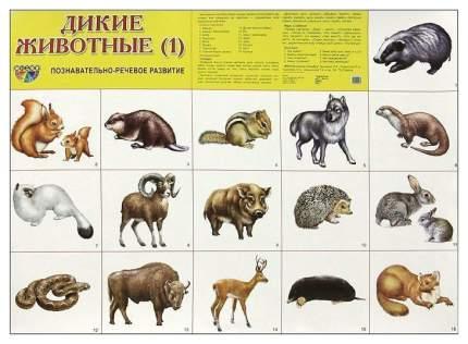 Демонстрационный плакат Дикие Животные -1 26842