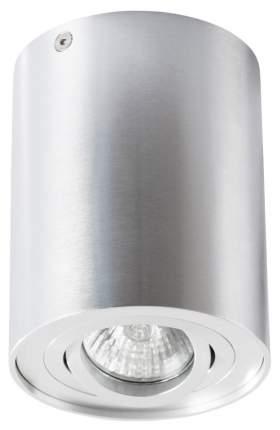 Потолочный светильник ARTE LAMP Falcon A5644PL-1SI