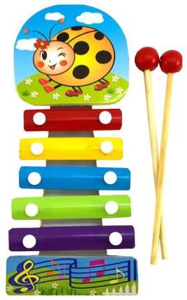 Ксилофон игрушечный Shantou Gepai лето 5 тонов SPY10961