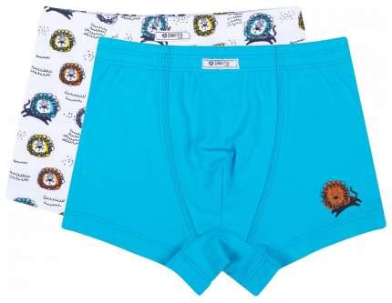 Трусы для мальчика Barkito 2 шт., голубые и белые с рисунком львы р.110-116