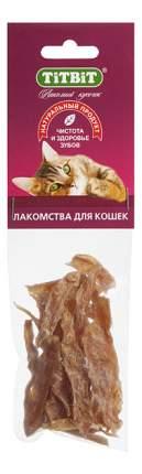 Лакомство для кошек TITBIT Филе куриное