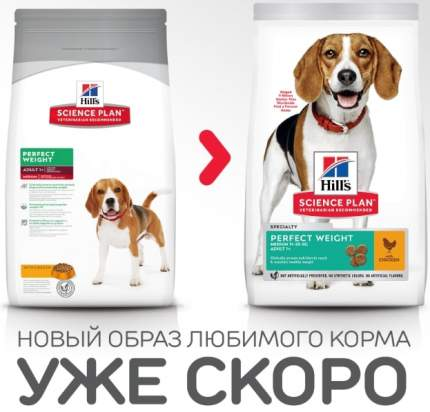 Сухой корм для собак Hill's Science Plan Perfect Weight Adult Medium, курица, 10кг