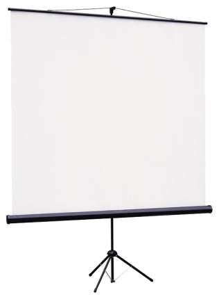 Экран для видеопроектора ViewScreen Clamp TCL-1104 Белый