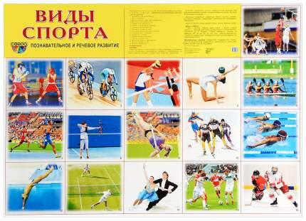 Демонстрационный плакат Виды Спорта 00-00002764