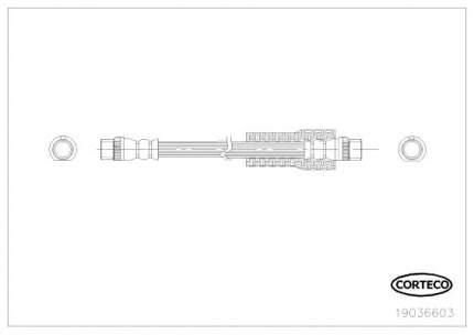 Шланг тормозной CORTECO 19036603