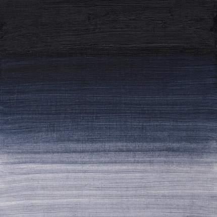 Масляная краска Winsor&Newton Artists виноградный черный 37 мл