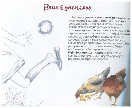 Книга Редкая птица Я рисую птиц. Петух и Ко