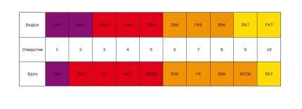 Губная гармоника диатоническая HOHNER Golden Melody 542/20 F# + доступ к урокам 30 дн