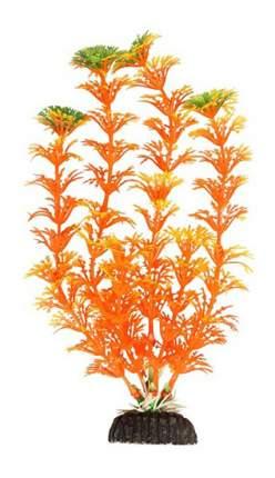 Laguna Растение аквариумное Амбулия оранжевая, 30 см