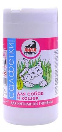 Влажные салфетки для кошек и собак Астрафарм Айда гулять! для интимной гигиены, 40шт