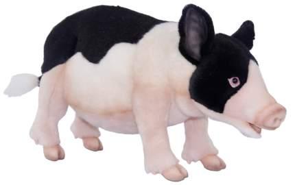 """Мягкая игрушка """"Вьетнамская вислобрюхая свинья"""", 45 см"""