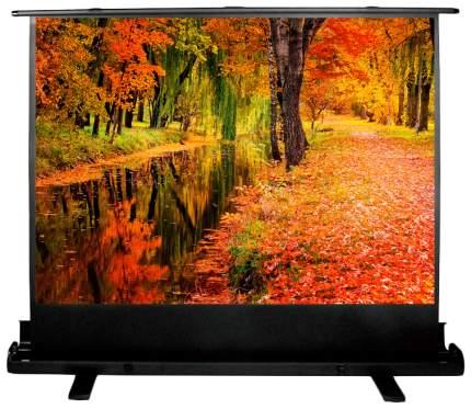 Экран для видеопроектора Cactus FloorExpert CS-PSFLE-200X150