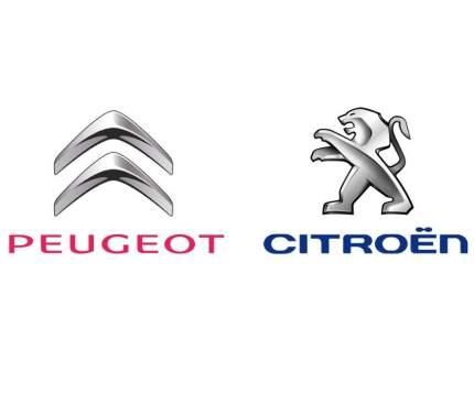 Молдинг Peugeot-Citroen 9673695080