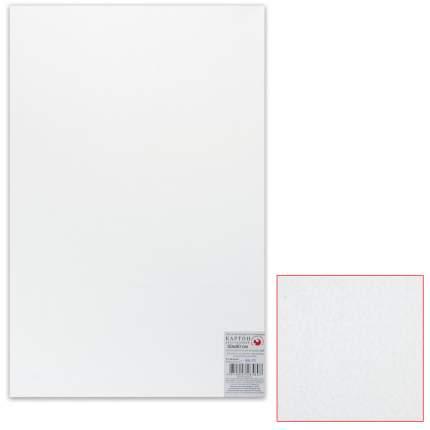 Белый картон грунтованный для живописи ПОДОЛЬСК-АРТ-ЦЕНТР 50х80 см