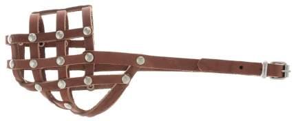 Намордник для собак Аркон, коньячный, размер 26 см