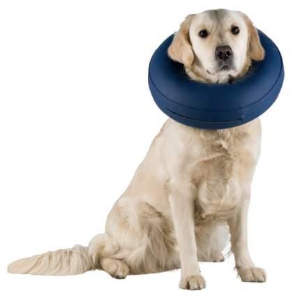 Защитный воротник для собак Trixie Protective Collar L, синий