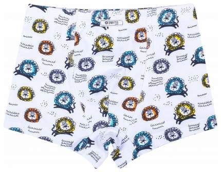 Трусы для мальчика Barkito 2 шт., голубые и белые с рисунком львы р.122-128