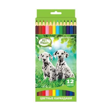 Набор цветных карандашей ЛЮБИМЫЕ ПИТОМЦЫ 12 цв. шестигранные