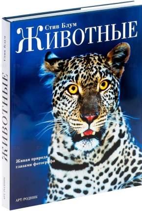 Книга Животные: живая природа глазами фотографа