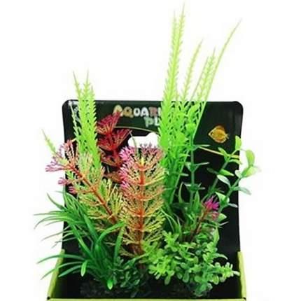 Растение аквариумное Композиция №52, 15 см