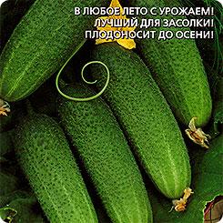 Семена Огурец Обхрустишься F1, 10 шт, Уральский дачник