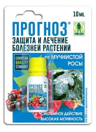 Защита от мучнистой росы Прогноз 10 мл, Грин Бэлт