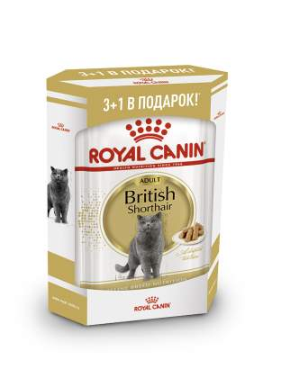 Влажный корм для кошек ROYAL CANIN British Shorthair Adult, мясо, 3+1шт, 85 г