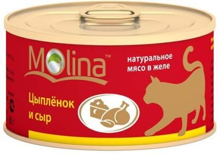 Консервы для кошек Molina, с цыпленком и сыром в желе, 80г