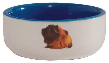 Одинарная миска для грызунов Beeztees, керамика, белый, голубой, 0.16 л