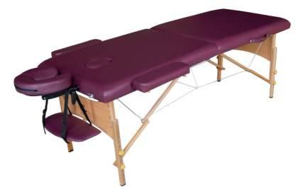 Массажный стол складной DFC Nirvana Relax plum