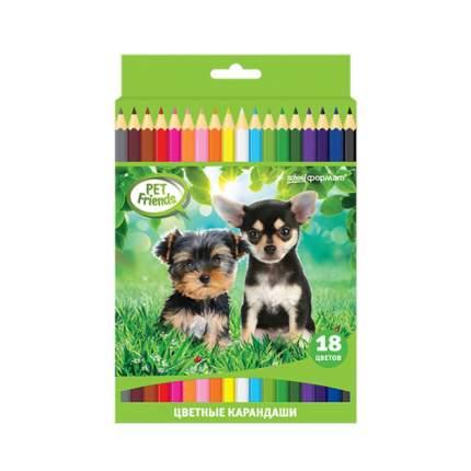 Набор цветных карандашей ЛЮБИМЫЕ ПИТОМЦЫ 18 цв. шестигранные