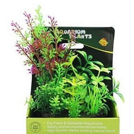 Растение аквариумное Композиция №57, 15 см