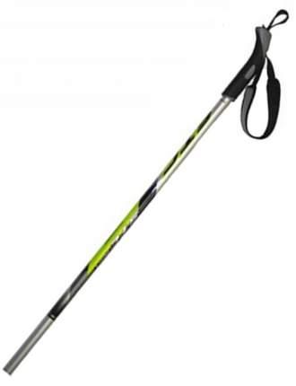 Лыжные палки STC 60/40 9296 2019, 150 см