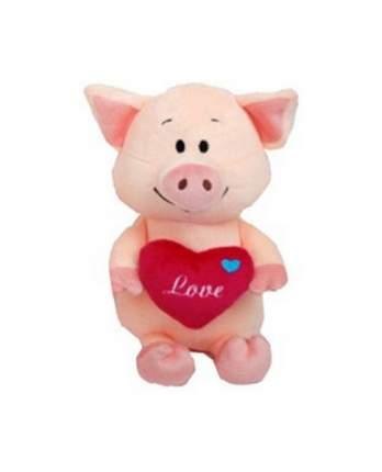 """Мягкая игрушка """"Поросёнок с сердечком"""", 22 см"""