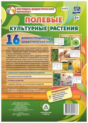 Культурные растения: полевые: 16 демонстрационных дидактических красочных карт с оборотом