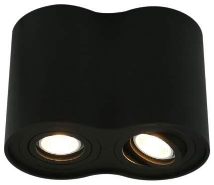 Потолочный светильник ARTE LAMP Falcon A5644PL-2BK