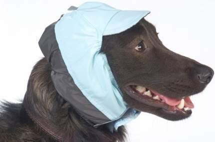 Шапка для собак ТУЗИК китайская хохлатая, ши-тцу унисекс, в ассортименте