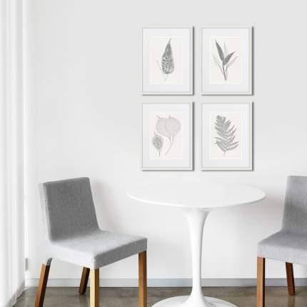 Коллекция The ferns (из 4-х картин), Картины в Квартиру