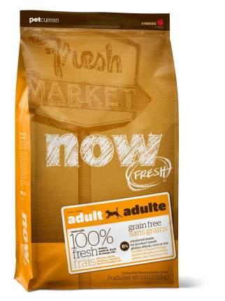 Сухой корм для собак NOW Fresh Adult, все породы, индейка, утка, овощи, 2,72кг