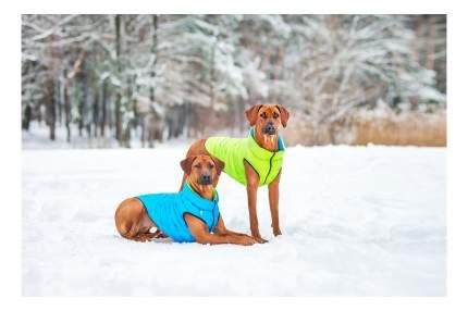 Куртка для собак AiryVest размер S унисекс, зеленый, голубой, длина спины 40 см