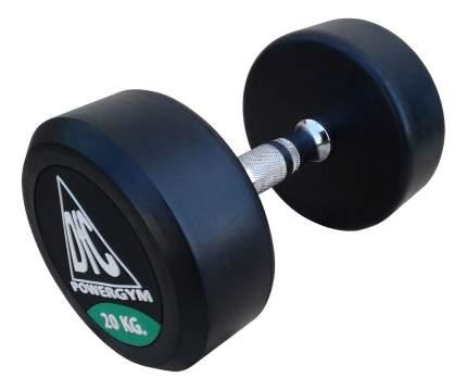 Гантели DFC Powergym 2 шт. по 20 кг DB002-20