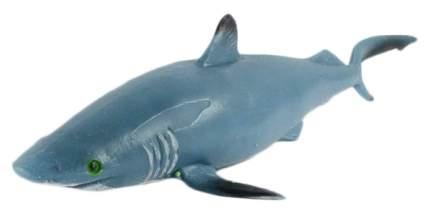 Животное-тянучка abtoys юный натуралист. акула