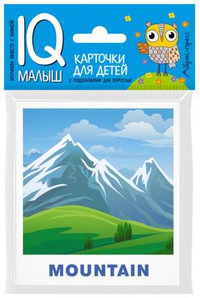 Набор карточек Айрис-Пресс Iq Малыш Умный Малыш English природа