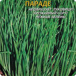 Семена Лук на зелень Параде, 80 шт, Плазмас