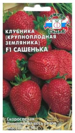 Семена Клубника крупноплодная Сашенька F1, 15 шт, СеДеК