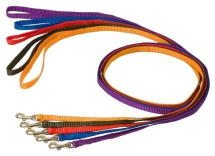 Поводок для собак  Дарэлл  капроновый в ассортименте 10мм х 1,2м
