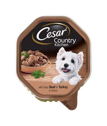 Консервы для собак Cesar, с аппетитной говядиной и индейкой в соусе, 150г