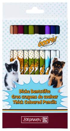 Набор цветных карандашей BRUNNEN BR29856-341 трехгранная форма
