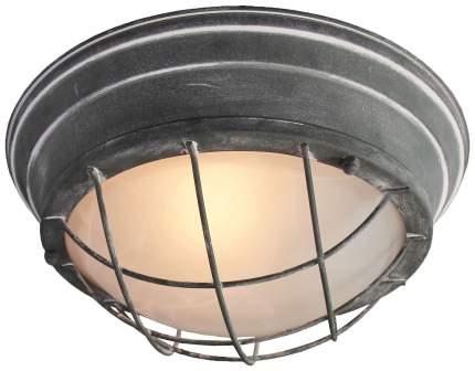 Светильник для ЖКХ Lussole lSP-9881 LSP-9881
